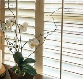 window blinds Garden Ridge tx
