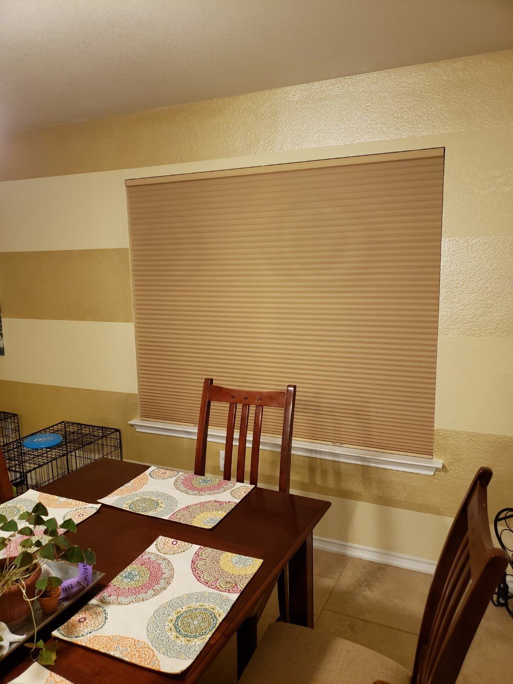 Comfortex Colorlux Cordless Cellular shades in San Antonio, TX